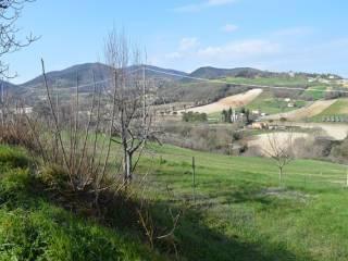 Foto - Terreno agricolo in Vendita a Arcevia