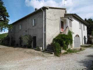 Foto - Rustico / Casale via Val di Cornia, Suvereto