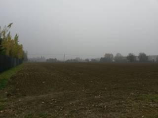 Foto - Terreno agricolo in Vendita a Castenaso