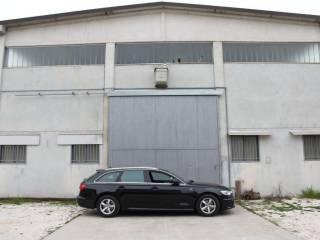 Immobile Affitto Castelvetro Piacentino