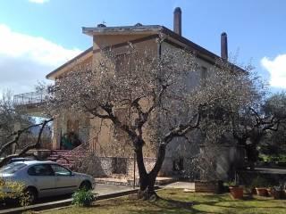 Foto - Villa viale dell'Auricola 4, Amaseno