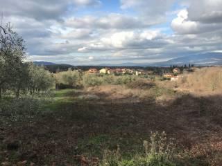 Foto - Terreno agricolo in Vendita a Cavriglia