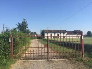 Foto - Terreno agricolo in Vendita a Castelvetro Piacentino