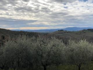 Foto - Bilocale da ristrutturare, piano terra, Castellina in Chianti