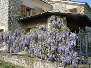 Foto - Rustico / Casale via Villa Bassa, Mercatino Conca