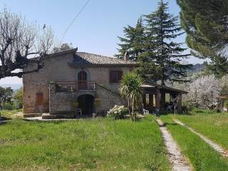 Foto - Rustico / Casale via San Martino, Roccantica