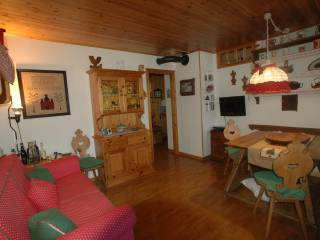 Foto - Bilocale via Pècol 18, Val di Zoldo