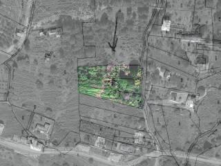 Foto - Terreno agricolo in Vendita a Mascali