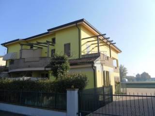 Foto - Quadrilocale via Benvenuto Pignatti 119, San Felice sul Panaro