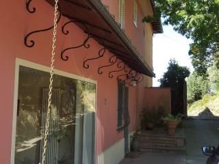Foto - Rustico / Casale via della Carraia, Lamporecchio