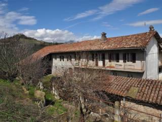 Foto - Cascina via Borgonuovo a, Monchiero