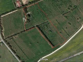 Foto - Terreno agricolo in Vendita a Villacidro
