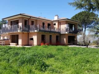 Foto - Villa via Santa Maria 3, Gallicano nel Lazio