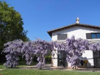 Foto - Appartamento via di baccanello, Cesano, Roma