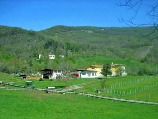 Foto - Terreno agricolo in Vendita a Cuneo