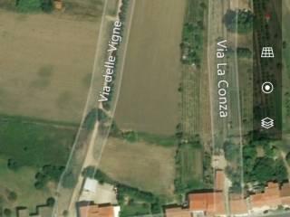 Foto - Terreno agricolo in Vendita a Santa Maria Coghinas