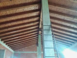 Foto - Terreno edificabile residenziale a Massanzago