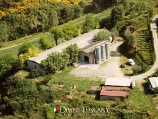 Foto - Terreno agricolo in Vendita a Chiusi
