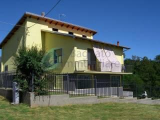 Foto - Villa frazione Pandale, Piatto