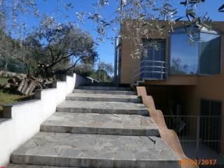 Foto - Villa, nuova, 300 mq, Villanova d'Albenga