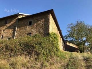 Foto - Rustico / Casale via Cerratello, Montefiorino