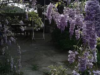 Foto - Villa via Carrubbara, Rocchenere, Pagliara