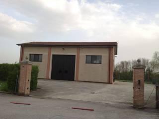 Immobile Affitto Grisignano di Zocco