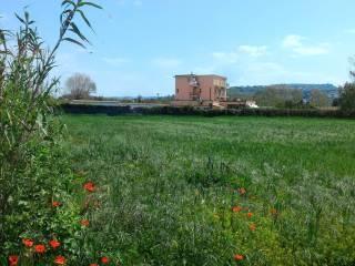 Foto - Terreno agricolo in Vendita a Pozzuoli
