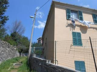 Foto - Appartamento salita Chiapparolo, Quezzi, Genova