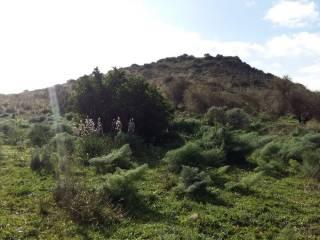 Foto - Terreno agricolo in Vendita a Furtei