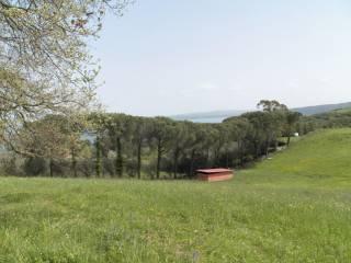 Foto - Villa via della Lobbra, Bracciano