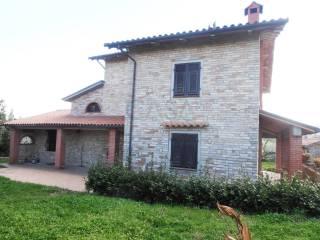 Foto - Rustico / Casale, buono stato, 249 mq, Montalto delle Marche