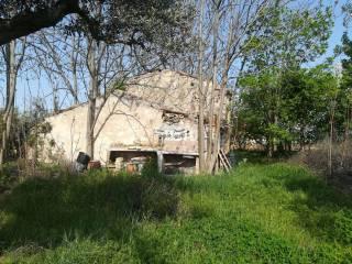 Foto - Terreno agricolo in Vendita a Catignano