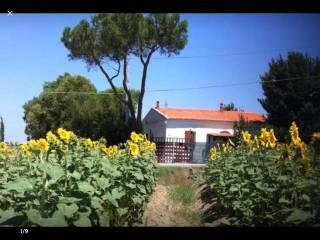 Foto - Casa indipendente via di Mortaiolo, Collesalvetti