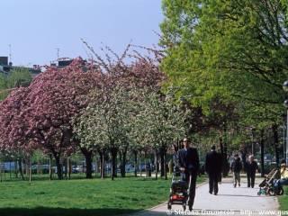 Foto - Piso muy buen estado, Pagano, Milano