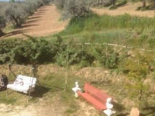 Foto - Terreno agricolo in Vendita a Tollo