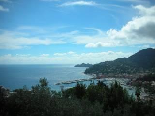 Foto - Terreno edificabile residenziale a Rapallo