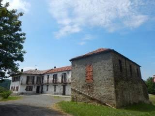 Foto - Cascina regione Levagnino, Olmo Gentile