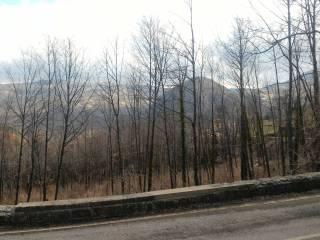 Foto - Trilocale da ristrutturare, piano terra, Montalbano, Firenzuola