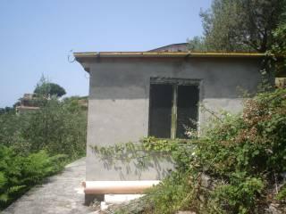 Foto - Terreno edificabile residenziale a Montignoso