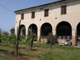 Foto - Casale, da ristrutturare, 600 mq, Vò Di Sotto, Vo'