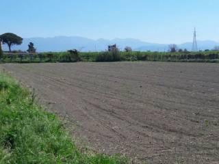 Foto - Terreno agricolo in Vendita a Acerra