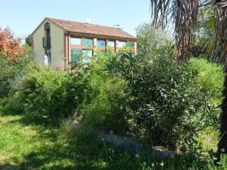 Foto - Terreno edificabile residenziale a Vedelago