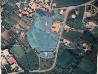 Foto - Terreno edificabile commerciale a Ricadi