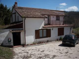 Foto - Rustico / Casale Contrada Cuffiano, Morcone