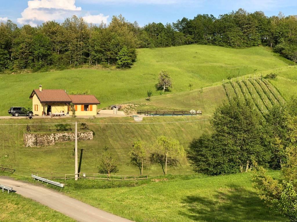 foto  Villa Località Stabielle Fraz  Rovinaglia, Borgo Val di Taro
