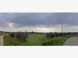 Foto - Terreno agricolo in Vendita a Melissano