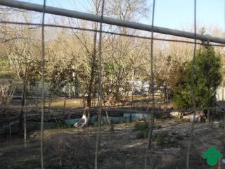 Foto - Terreno edificabile residenziale a Grottolella