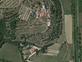 Foto - Terreno agricolo in Vendita a Castiglion Fiorentino
