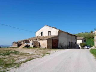 Foto - Rustico / Casale Contrada Posenzano, Monterubbiano